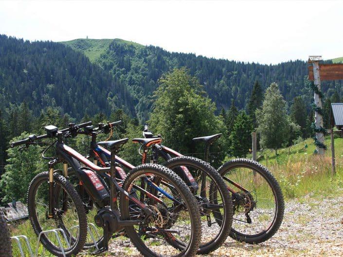 Schöne E-Bikes im Schwarzwald