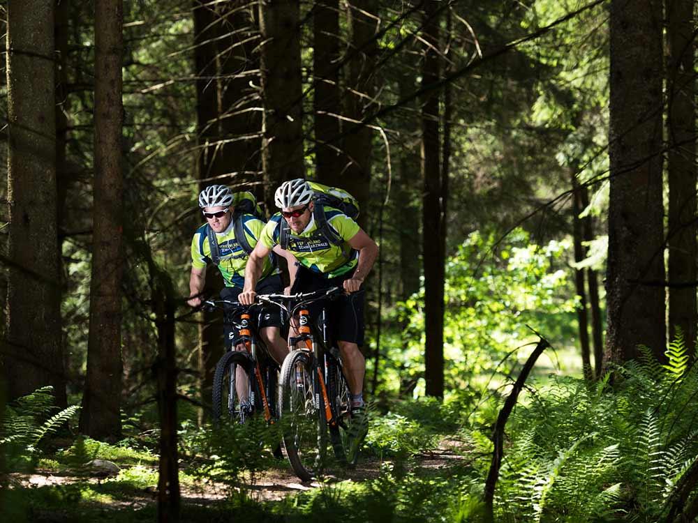 Mountainbiker auf Trail durch den Schwarzwald bei Furtwangen.
