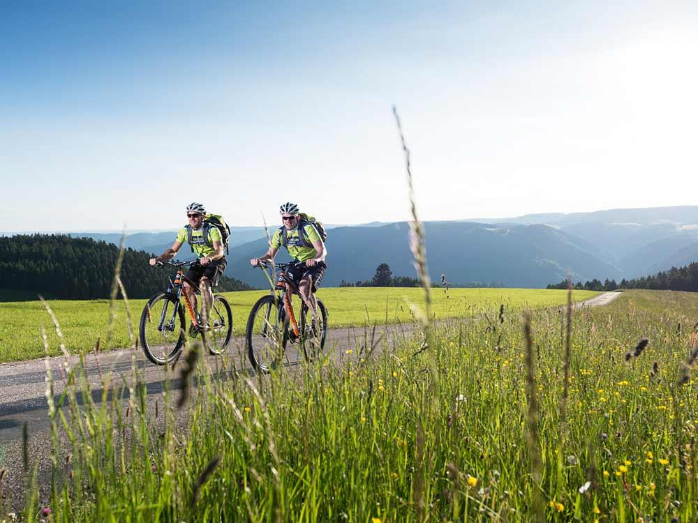 Mountainbiker fahren mit ihren Bikes über einen Feldweg in der Nähe von Furtwangen im Schwarzwald