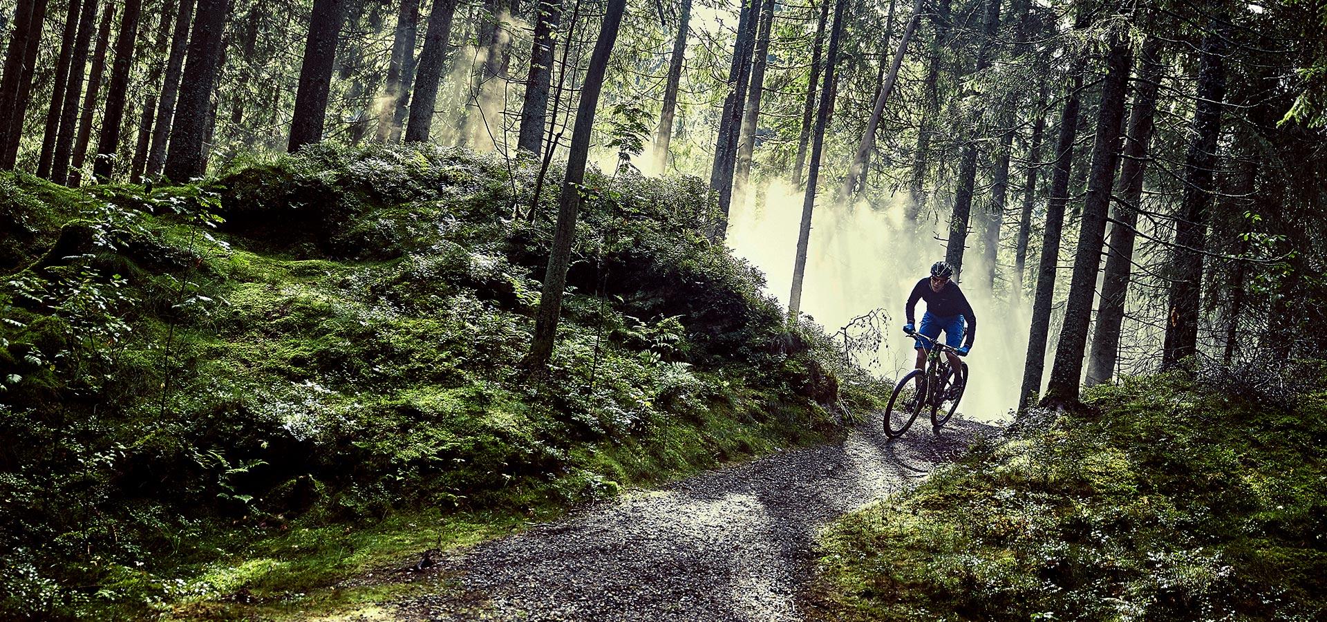 MTB Fahrtechnik & MTB Touren im Schwarzwald powered by HIRSCH-SPRUNG