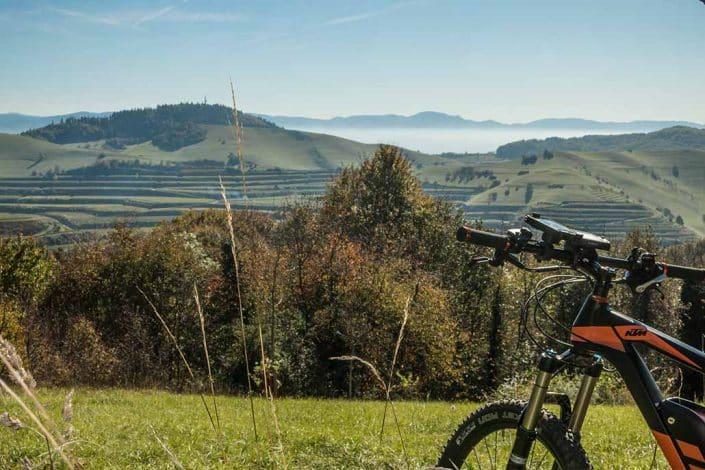 Mit dem E-Bike kann man auch den Kaiserstuhl erkunden.