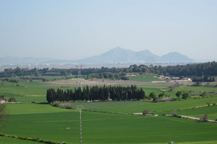 Landschaft HIRSCH-SPRUNG Rennrad Reise Mallorca