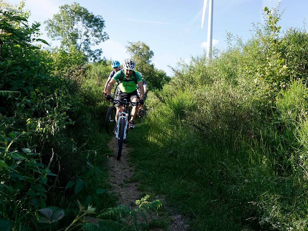Mountainbiken MTB Reise Schwarzwald Gipfeltrail Flow & Shuttle