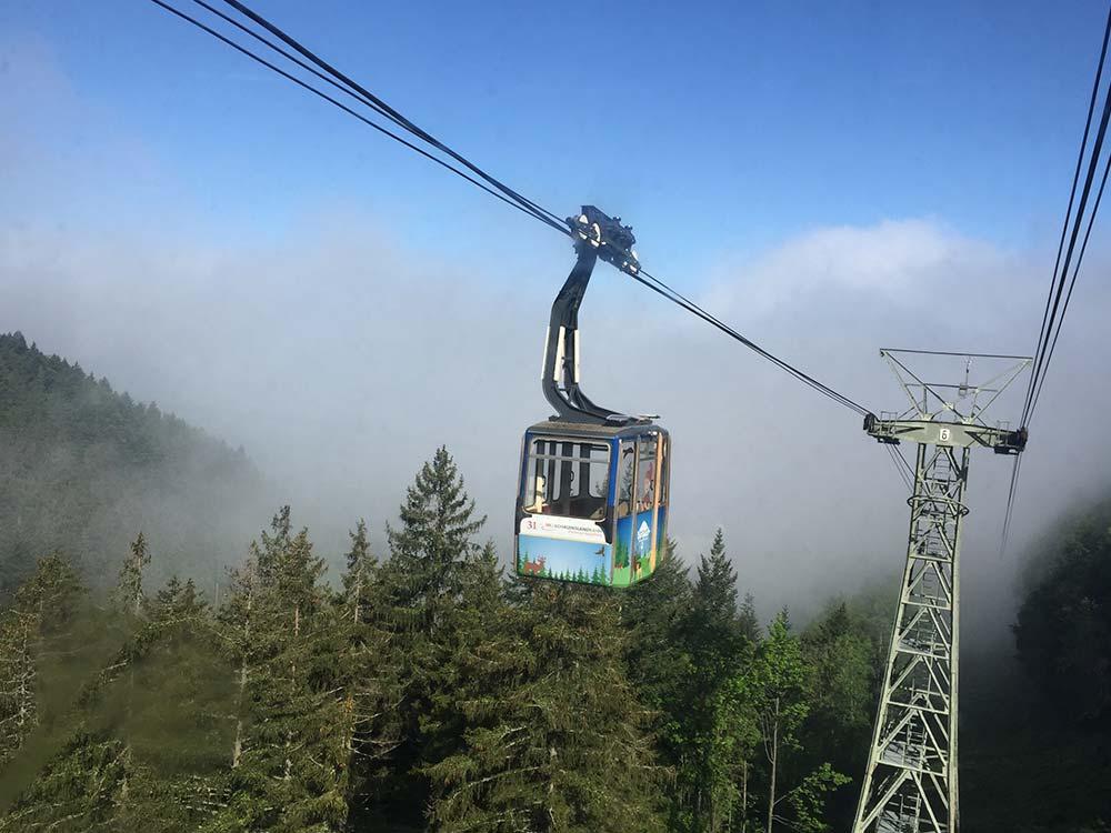 MTB Tour im Schwarzwald auf dem Schauinsland - Gondel2Trail mit Hirsch-Sprung