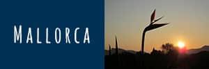 HIRSCH-SPRUNG Fahrtechnik-Touren auf Mallorca