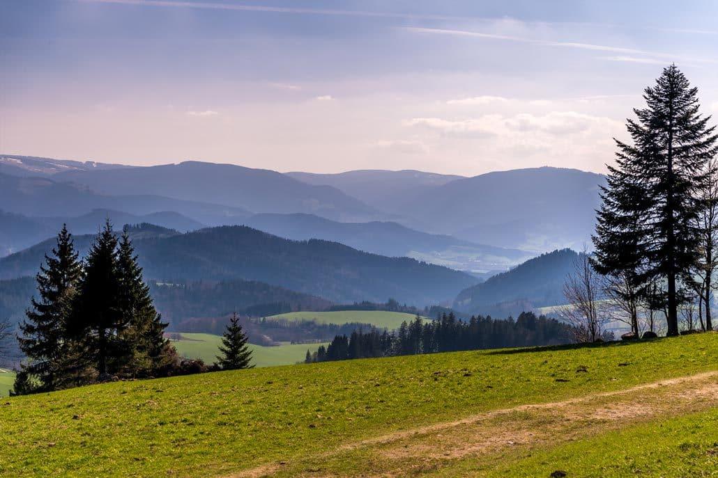 Landschaft HIRSCH-SPRUNG MTB Fahrtechnik Training Kirchzarten