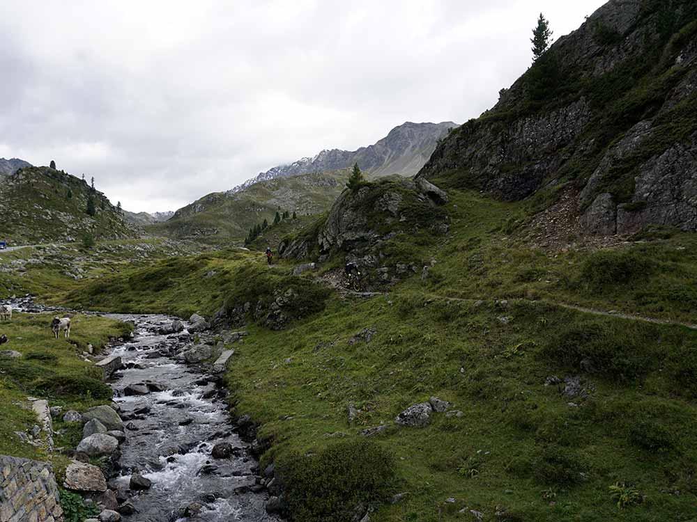 Natur pur bei der MTB Reise Alpen Davos