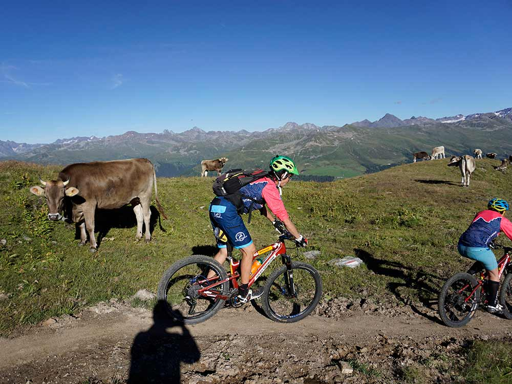 Mountainbike Tour MTB Reise Davos Alpen