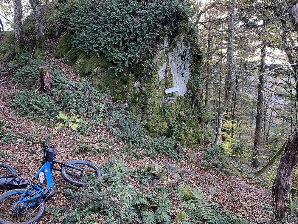 schwarzwald-cross-trail